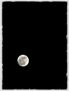 Moon photo by David Bradley