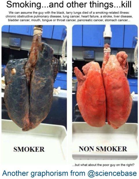 Smoking kills… – David Bradley